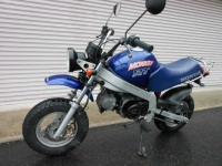 Honda Monkey RT