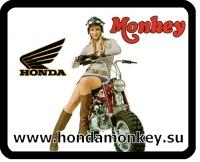 Номер Honda Monkey с девушкой