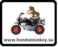 Номер Honda Monkey с обезьянкой